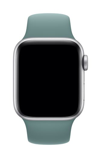 Apple Watch 40mm Cactus Sport Band - Regular